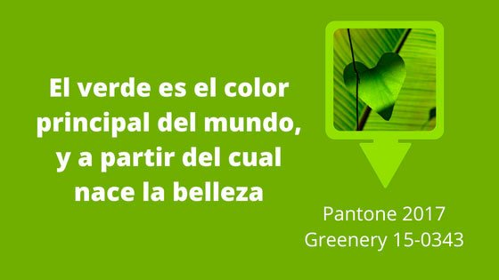 descripcin ideal del color verde con esta pequea frase